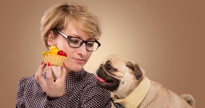 Les meilleurs conseils pour un chien en meilleure santé